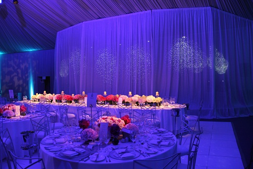 Top Table with Voile Backdrop
